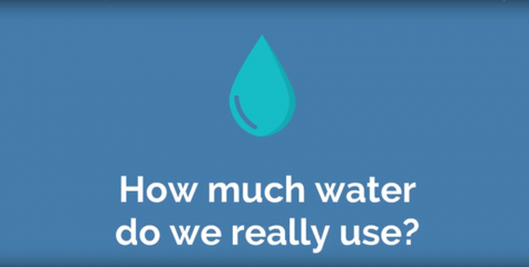 How Much Water Do We Really Use?
