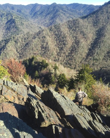The peak of the Chimney Top outlook can only be reached by scaling a nearly vertical rock cropping. Free hand rock climbing experience is helpful in making this ascent.