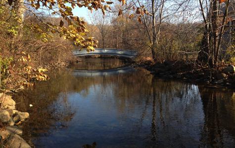 Ann Arbor bridges