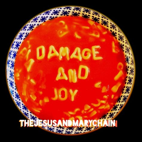 """Damage and Joy"""