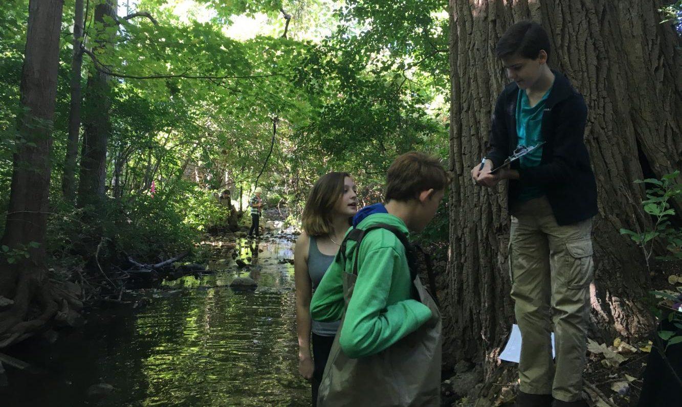 Traver Creek
