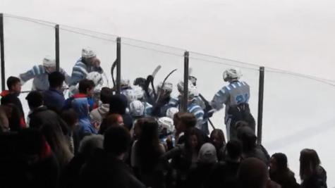 Skyline Hockey Celebrates Close Win Over Gabriel Richard